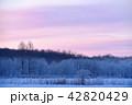 朝焼けと樹氷(北海道・更別) 42820429