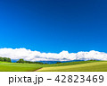 《北海道》美瑛・夏の空と田園風景 42823469