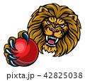 ライオン クリケット マスコットのイラスト 42825038