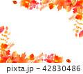 紅葉 秋 フレームのイラスト 42830486