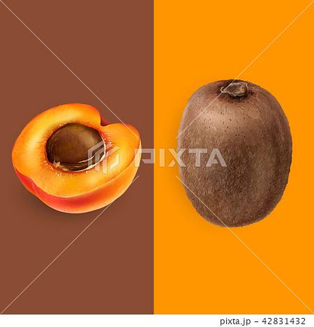 Apricot and kiwi illustration 42831432