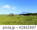富士山 42842997