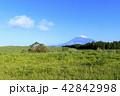 富士山 42842998