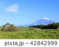 富士山 42842999