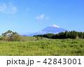 富士山 42843001