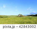 富士山 42843002