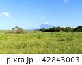 富士山 42843003
