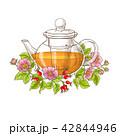 バラ フラワー 花のイラスト 42844946