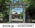 宮崎神社 神社 晴れの写真 42850987