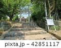 宮崎神社 神社 晴れの写真 42851117