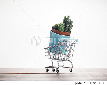 ショッピングイメージ 42853134