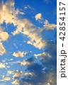 雲 空 夕方の写真 42854157