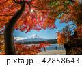 秋 富士山 景色の写真 42858643
