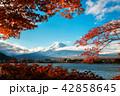 秋 富士山 景色の写真 42858645