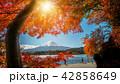 富士 富士山 湖の写真 42858649