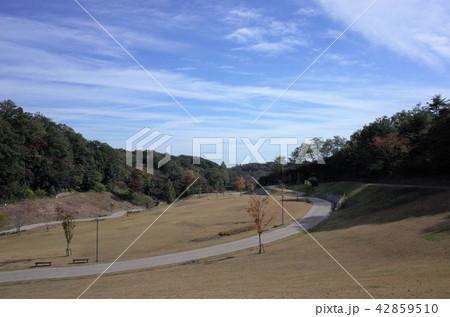 秋の紅葉が彩る山と田舎の公園 42859510
