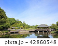天拝山歴史自然公園 公園 池の写真 42860548