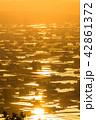 夕暮れ 夕景 散居村の写真 42861372