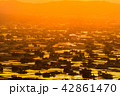 夕暮れ 夕景 散居村の写真 42861470