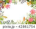 花 植物 秋桜のイラスト 42861754