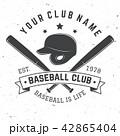 バット ベースボール 白球のイラスト 42865404