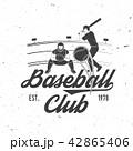 ベースボール 白球 野球のイラスト 42865406