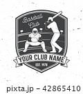 ベースボール 白球 野球のイラスト 42865410
