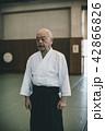 Aikido 42866826