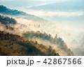 beautiful foggy autumn background 42867566