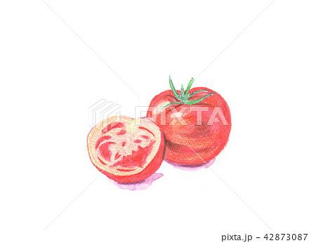 トマト トマト とまと 42873087