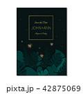ほたる ホタル 姫蛍のイラスト 42875069