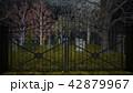 不気味な墓 42879967
