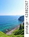 青空 夏 神威岬の写真 42882267