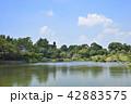 熊本市 風景 水前寺公園 42883575