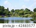 熊本市 風景 水前寺公園 42883577