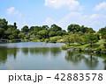 熊本市 風景 水前寺公園 42883578