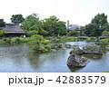 熊本市 風景 水前寺公園 42883579