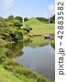 熊本市 風景 水前寺公園 42883582