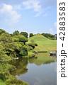 熊本市 風景 水前寺公園 42883583