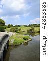 熊本市 風景 水前寺公園 42883585