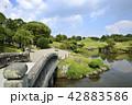 熊本市 風景 水前寺公園 42883586