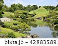 熊本市 風景 水前寺公園 42883589