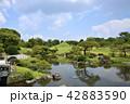 熊本市 風景 水前寺公園 42883590