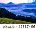 富士山 大雲海 夜明けの写真 42887466