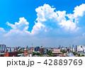 《東京都》東京の夏・浅草と夏の空 42889769