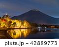 富士山 山中湖 ライトアップの写真 42889773