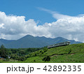 小海線 列車 ローカル線の写真 42892335