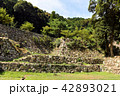 史跡 城 石垣の写真 42893021