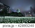 Light Rose Garden In Hong Kong City at night 42893240