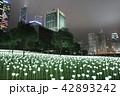 Light Rose Garden In Hong Kong City at night 42893242